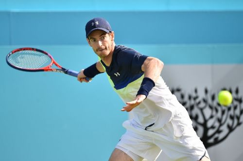 Murray will wait to decide on Wimbledon bid