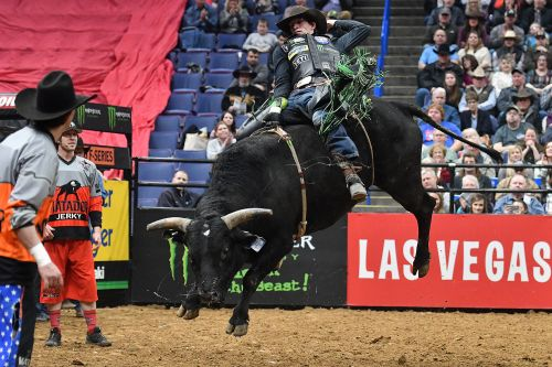 Bull rider dies after getting bucked off during competition
