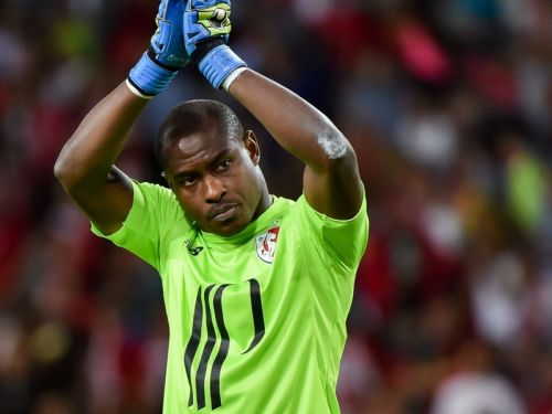 African All Stars Transfer News & Rumours: Lille part ways with Enyeama