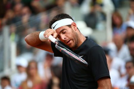 Tennis: Del Potro waits to see if groin injury scuppers French Open plans
