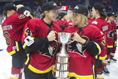 Top women's hockey players form union to assist ultimate goal