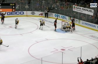 HIGHLIGHTS: Ducks fall to Penguins 7-4