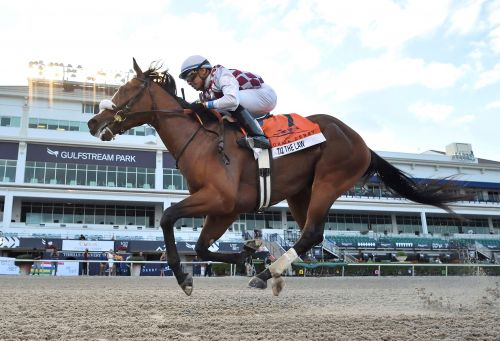 Tiz the Law wins the Florida Derby in front of no fans
