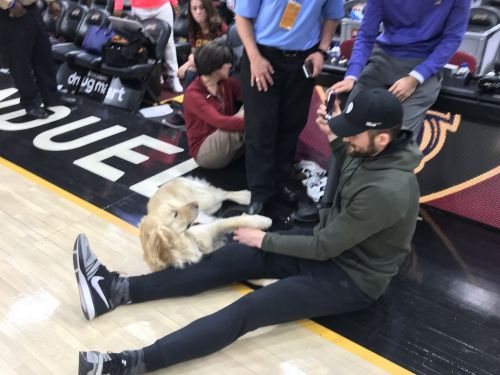 Cleveland Cavaliers are seriously considering getting a dog after success with Remington