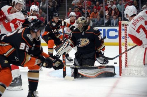 Anaheim Ducks vs. San Jose Sharks - 11/14/19 NHL Pick, Odds, and Prediction