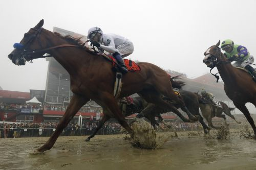 Preakness winner Justify's toughest test still in front of him