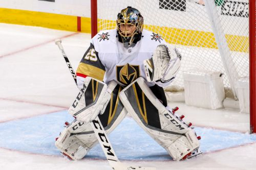 Marc-Andre Fleury caught trying to build a snow wall