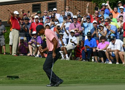 Tiger soars with an eagle, shares lead at Tour Championship