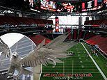 The futuristic Super Bowl arena: What the £1.2bn Mercedes-Benz Stadium has on offer