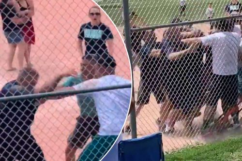 Brawl erupts between parents, coaches at youth baseball game