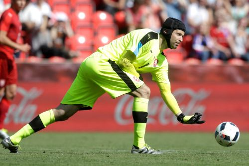 Ex-soccer goalie Petr Cech joins English hockey team in surprise move