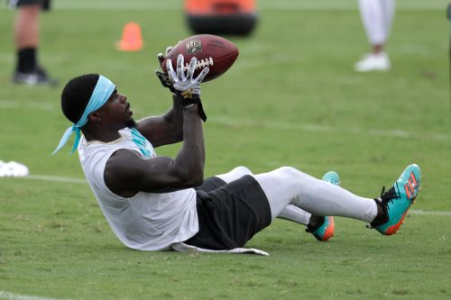 Dolphins' Grant gets 4-year deal worth up to $24 million