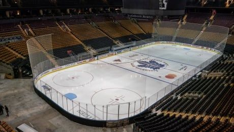 NHL teams look to take necessary precaution before training camps begin