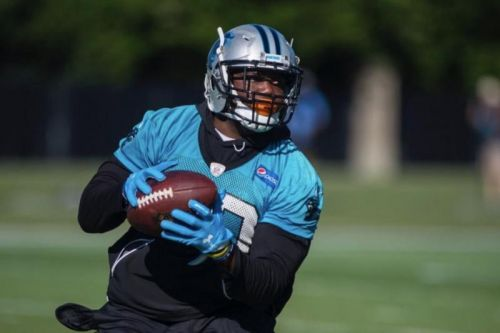 Carolina Panthers waive RB C.J. Anderson