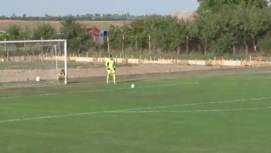 Canine pitch invader injures player in Romanian football match