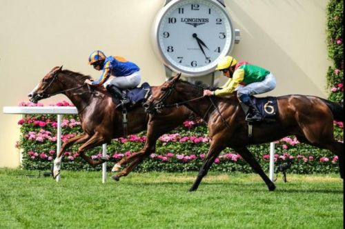 Love, Palace Pier, Poetic Flair, Subjectivist star in early Royal Ascot action