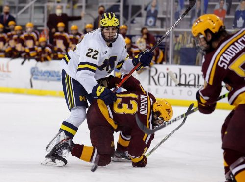 Unusual year creates unusual entry draft for NHL prospects, scouts